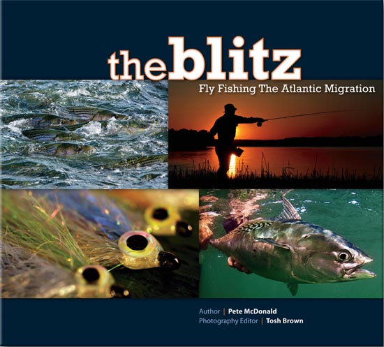 "The Blitz : ""Fly Fishing The Atlantic Migration"""