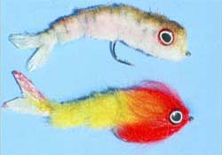 cct_articulated_minnow_kit