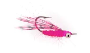 central_mini_shrimp_pink_lg.jpg