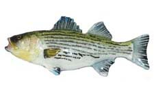 creative_castings_pin_painted_striper.jpg