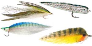 fly_striper_link_large_baitfish