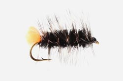 loon_wooly_worm_fly_SM