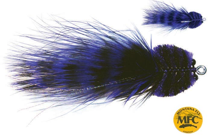 mfc_barred_marabou_toad_purple_black_lg.jpg