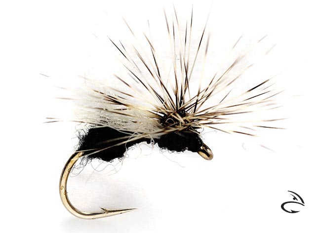 orvis_ost_jonny_king_splitsville_flying_ant_black_lg.jpg