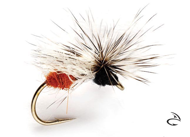 orvis_ost_jonny_king_splitsville_flying_ant_blk_red_lg.jpg