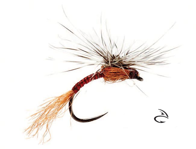 orvis_ost_jonny_king_tactical_outrigger_emerger_red_quill_lg