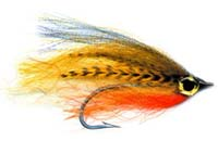 pfg_brents_streamer_perch.jpg