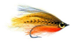 pfg_brents_streamer_perch_lg.jpg