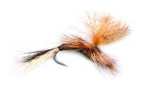 pfg_confusion_emerger_march_brown