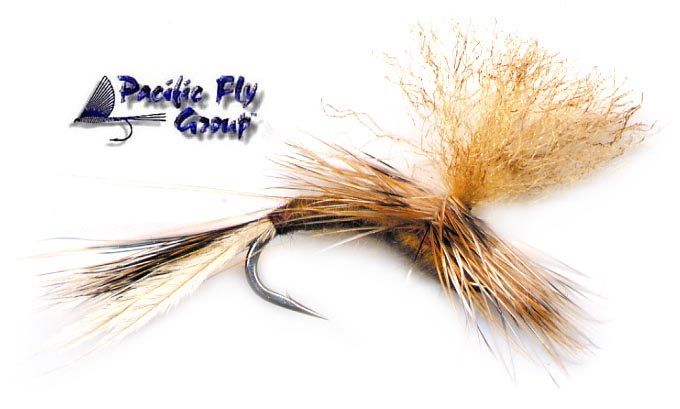 pfg_confusion_emerger_march_brown_lg1