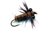 pfg_dragonfly_nymph_brown.jpg