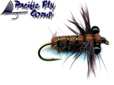 pfg_dragonfly_nymph_brown_lg.jpg
