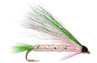 pfg_little_rainbow_trout.jpg