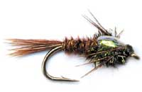 pfg_pheasant_tail_flash_back.jpg