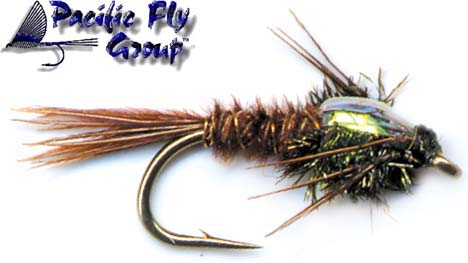 pfg_pheasant_tail_flash_back_lg.jpg