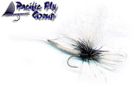 pfg_robs_100_pound_coffin_fly_lg.jpg