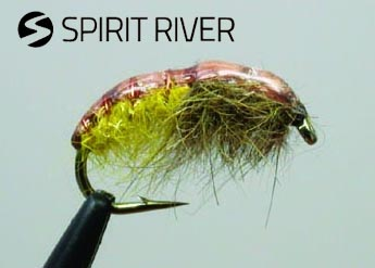 spirit_river_rock_creek_caddis_lg.jpg