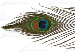 spirit_river_uv2_peacock_eye.jpg