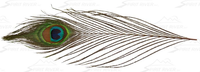 spirit_river_uv2_peacock_eye_lg.jpg