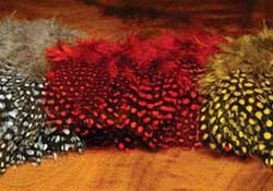 tie_fh_guinea_feather_sm
