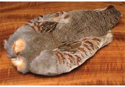 tie_fh_hungarian_partridge_natural_skin