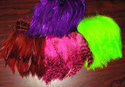 Fly Tying: Natural Feathers & Hackle at BEARSDEN COM