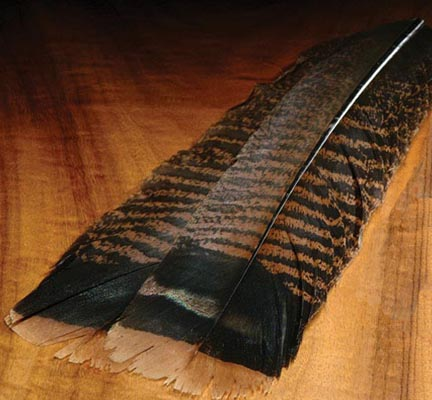 tie_fh_turkey_ozark_tail_cinnamon