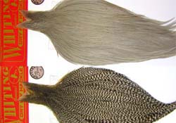 tie_fh_whiting_dry_fly_cape_sm