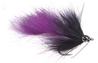 ump_swamp_rabbit_black_purple.jpg