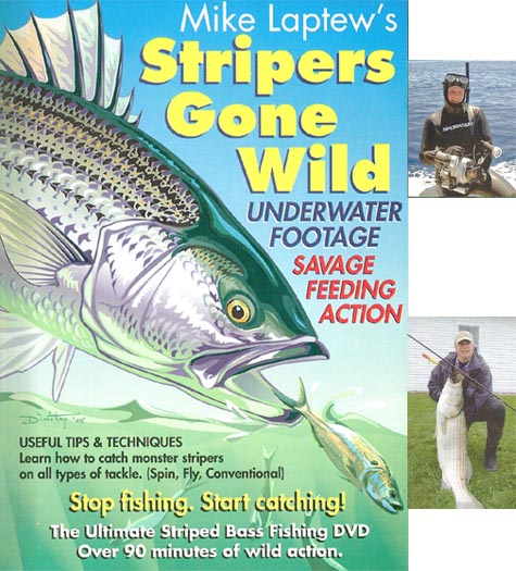 Stripers gone wild
