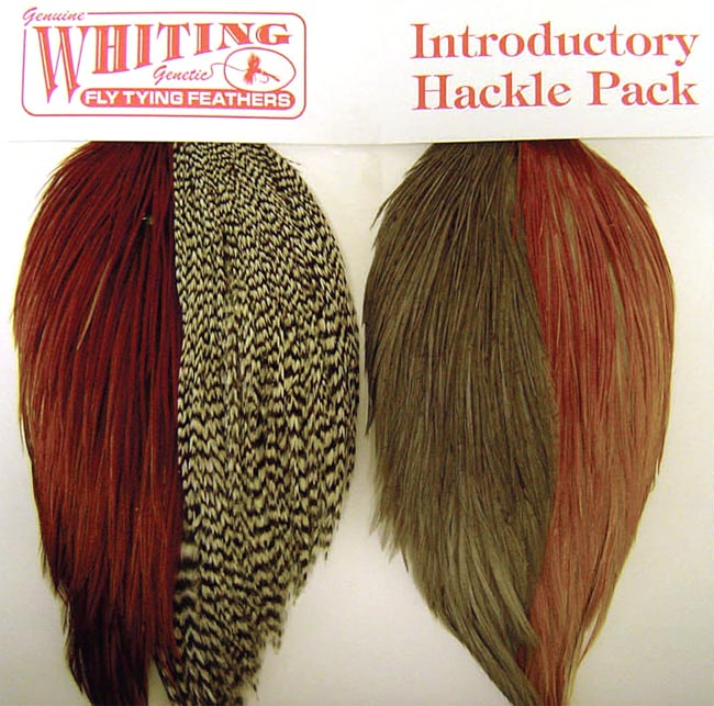 whiting_introductory_pack_cape_lg