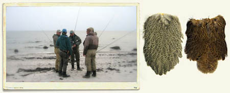 Whiting Hackle at BEARSDEN COM