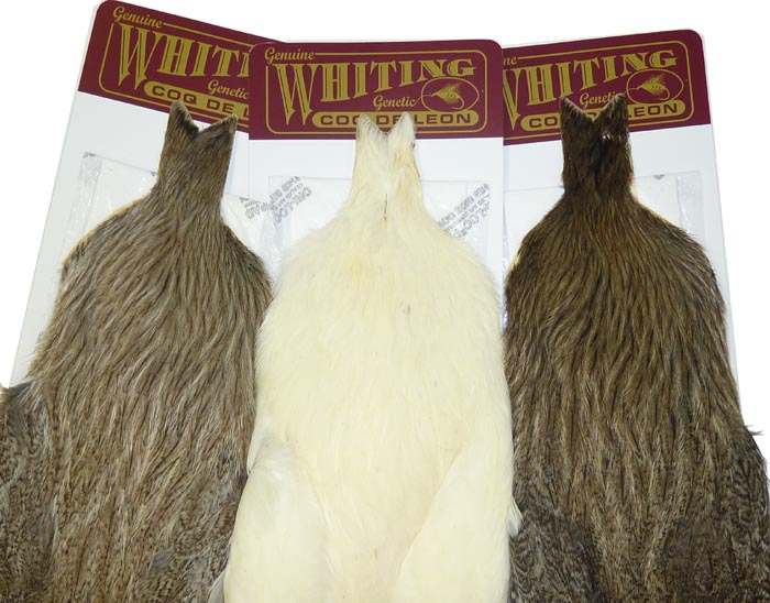 whitings_coqdeleon_hen_cape_lg