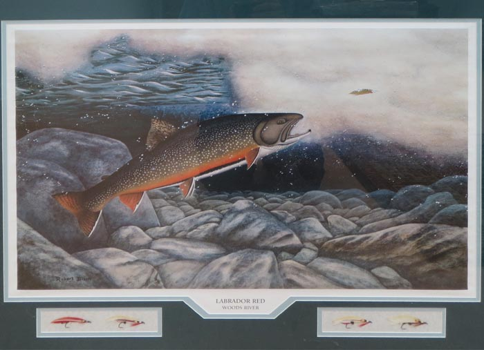 woods_river_brook_trout_lg